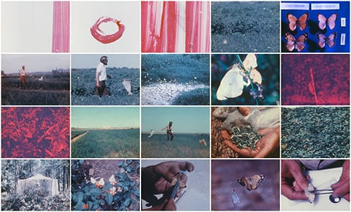 A grid of 20 stills from a movie